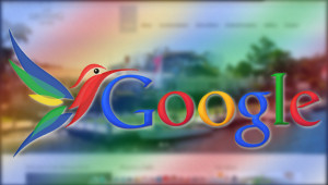googlehummingbird-300x170